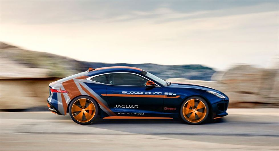 jag_ftype_bloodhound_image_200515_LowRes